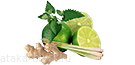 lime-imbir-lemongrass-mint
